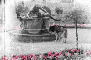 Der Brunnen - 2009